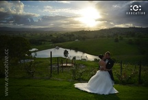 Wedding Photography / Weddings that we've photographed.