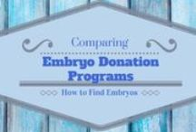 Embryo Donation / by Creating a Family