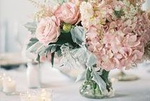 P A R T Y | P I N K / Pink Theme - Party & Wedding decor