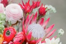 Wedding Flowers / by Donna Hairr
