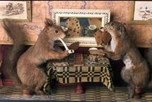 Taxidermy Creations / arts and crafts involving various species.