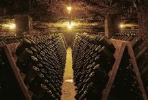 Vinos y Cavas / Lo mejor de vinos ¡ / by Arturo Meza Sanchez Laurel