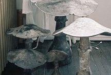Mushrooms! / fun fungi!