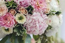 Wedding Flowers / by Allie Murray