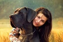 Photo Pet ideas