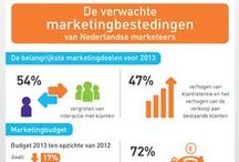 Marketing infographics / by Frankwatching