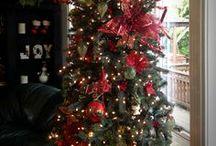 Christmas Tree's / Decorated Christmas Trees