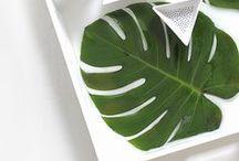 DIY : motif philodendron / On adore cette plante avec ses feuilles très graphiques. Le motif philodendron (ou monstera en anglais) se retrouve partout en décoration mais aussi dans les bijoux. voici des tutoriels du monde en entier avec ce motif tendance, dans une ambiance tropical.  philodendron-monstera-tropical-feuille-exotique-diy-loisirs créatifs-c'est moi qui l'ait fait