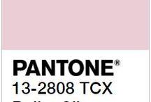 Ballet Slipper - couleur tendance Pantone automne hiver 2017/2018 / Un chausson de ballerine, un rose aérien et tournoyant (si ce n'est dansant). C'est un rose doux mais plus affirmé que le Primrose Pink. Un châle en double gaze de coton serait parfait avec cette couleur.