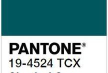 Shaded Spruce-couleur tendance automne hiver 2017/2018 - Pantone / Un vert forêt tirant sur l'émeraude foncé, plein de mystère et de promesses de jours plus chaleureux. C'est le vert du renouveau en dormance. Les saisons froides sont parfaites pour se mettre à la broderie avec nos écheveau en soie d'Alger de chez DMC.