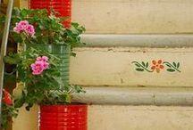 Home and Garden / by Caroline Van Slyke