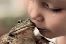Kiss the FROG / Frogs, frogs, frogs. / by Tamara @ Gourmetmama's Kitchen