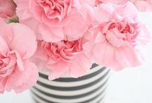 Flowers for beautiful girls