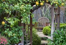 Gorgeous Gardens: Ideas / Backyard landscaping ideas, designs & inspiration.