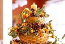 Harvest of Thanksgiving  / by Julie Lahr