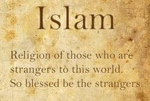 Islam《 religion of peace 》