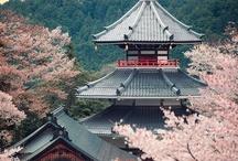 Japan《 my mistery  》