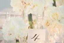 Weddings / by Alicia Palma-Espinoza