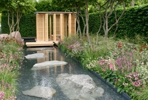 Water Features / by Linda Altland