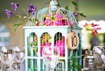 Beautiful Birdcages / by Hobbycraft
