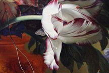 Art - Floral Still Life