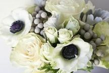 Wedding Colors: Black and White Ideas / An eclectic assortment of ideas for brides who want a black and white color palette.