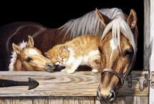 EQUINE ART / HORSE PAINTINGS / by Patricia Hitt