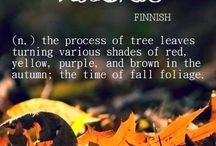 Autumn: Crisp 'n Cozy / My favorite season; a tug of war between summer and the approaching winter.-----leaves changing colors signal the beauty of change/it's positive flip side.