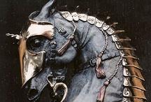 Medeviel Renaissance Knights