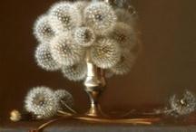 Flora | Petals, Fruits & Veggies / by Deb Scott