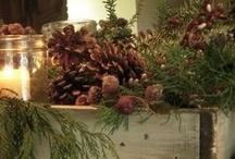 Holiday Ideas / by Heather Aughenbaugh