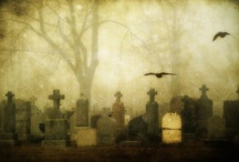 Graveyards / Graveyards, Tombstones and Burial Sites / by Renea Mason
