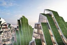 Green Roofs & Walls