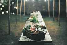 gardens & gatherings / by Cassidy Reich