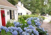 MARTHA'S VINEYARD / Annual Summer Retreat / by northshoreliving