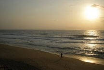 North Carolina Outer Banks / by Katie