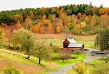 Autumn / by Shana Brennan