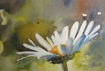 Whimsy Watercolours.. / by Raspberry Moon