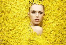 Mellow yellow!