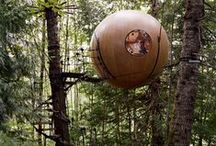Tree Forts and Other Magical BackYard Places / Tree Houses, Back Yard office spaces, etc.