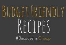 """"""" Budget Friendly Recipes / Nothing over $10! Crock pot, freezer meals, meal planning, dehydrator tips, canning tricks, etc."""