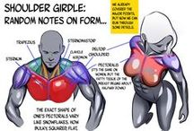 Anatomy / A collection showing details of how parts of the body fit and work together.