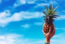Pineapple Love / all things pineapple related