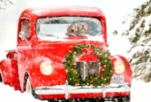 Christmas / by Scott Baver