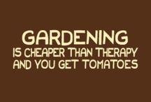 Gardening / by Gay Bryson