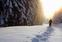 Wild & Free / by Visit Finland