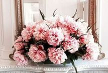 BLOOMS + LANDSCAPES / by The Style Scribe