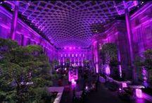 Gala: Purple Glam / Gala design ideas