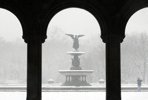 Best of Winter 2012-13 / Here are a few of our favorite photos from Winter 2012-13. / by Central Park Conservancy
