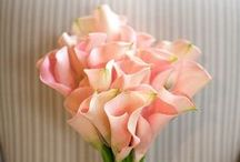 Wedding Flowers / by Justine Andrea Dy